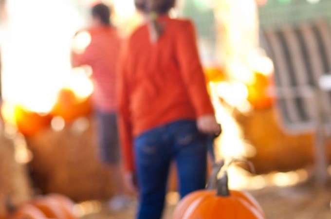 Massachusetts Fall Festivals and Events