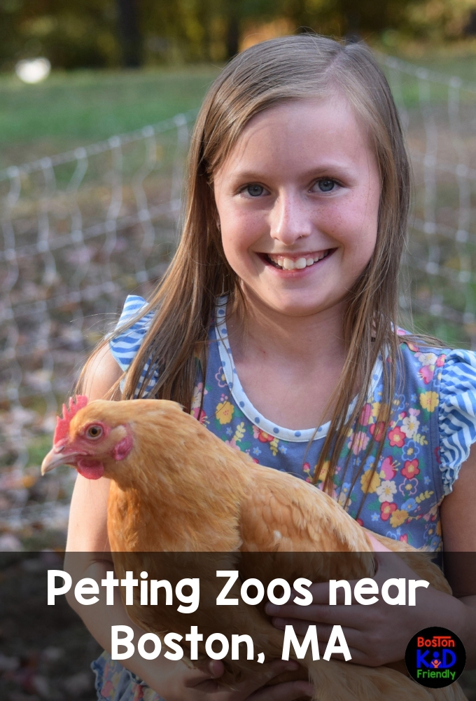 Great petting zoos for kids in Massachusetts within an hour of Boston.